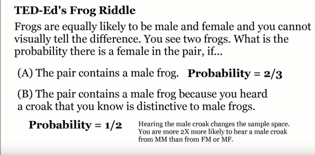 frogriddle1